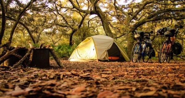 atputa-ar-velo-teltis